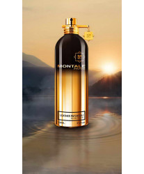 Montale Leather Patchouli Тестер